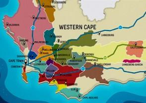 Länder Weinseminare - Südafrika Weinseminar - Weinrevolution am Kap