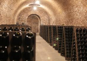 Champagner Seminare - Franciacorta - Italiens Spitzen-Spumante