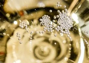 Champagner Seminare - Spitzensekt jenseits der Masse!