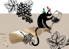 Online Weinproben - Online Rotwein Weinprobe - Italiens Rotwein Klassiker