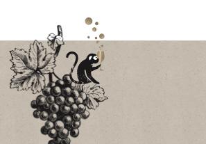 Online Weinproben - Online Champagner Tasting - Côte des Bar - der unterschätzte Süden