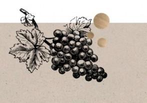 Online Weinproben - Online Weinprobe - Weine, die man kennen muss - Soave, Bordeaux & Amarone