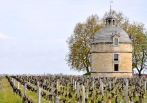 Länder Weinseminare - Bordeaux Weinseminar