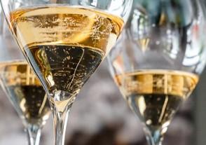 Champagner Seminar - Champagner Seminar