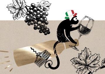 Online Rotwein Weinprobe - Italiens Rotwein Klassiker