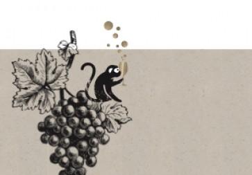 Online Champagner Tasting - Côte des Bar - der unterschätzte Süden