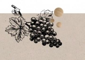 Online Weinprobe - Weine, die man kennen muss - Soave, Bordeaux & Amarone