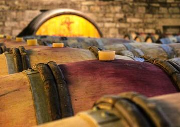 Burgund Weinseminar
