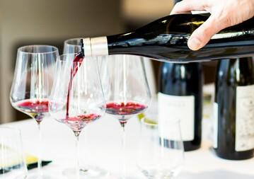 Rotwein Klassiker Weinseminar