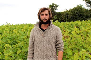 Frankreich Weinseminar - Loire