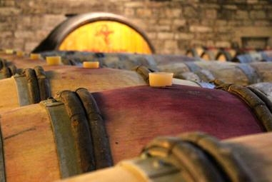 Rebsorten Klassiker Pinot Noir Weinseminar