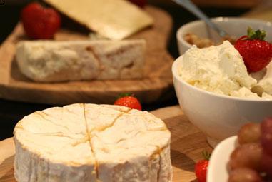 Wein & Käse Workshop