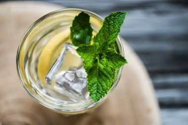 Gin Seminar - made in Germany