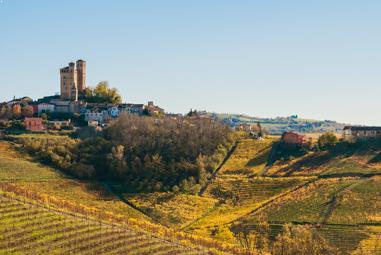 Italien Weinseminar - Giro d
