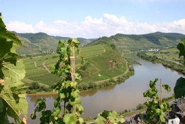 Deutschland Weinseminar- wieder Weltklasse!