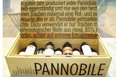 Österreich Weinseminar
