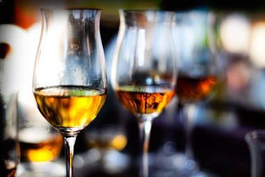 Whisky Seminar - Lust auf Whisky - der Einstieg